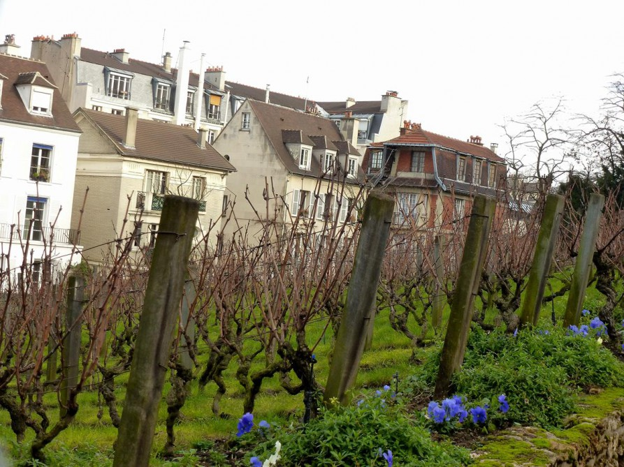 Commanderie du Clos Montmartre - Paris