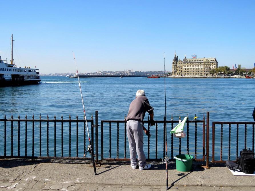 Angler, Kadiköy, Istanbul