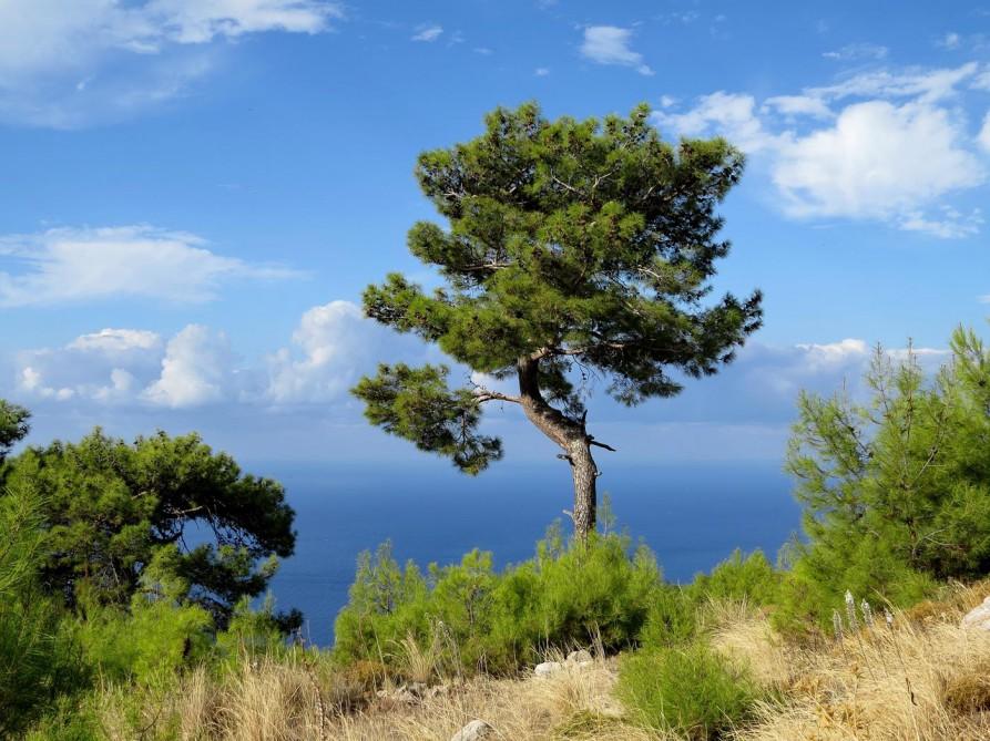 Lykischer Weg am Mittelmeer