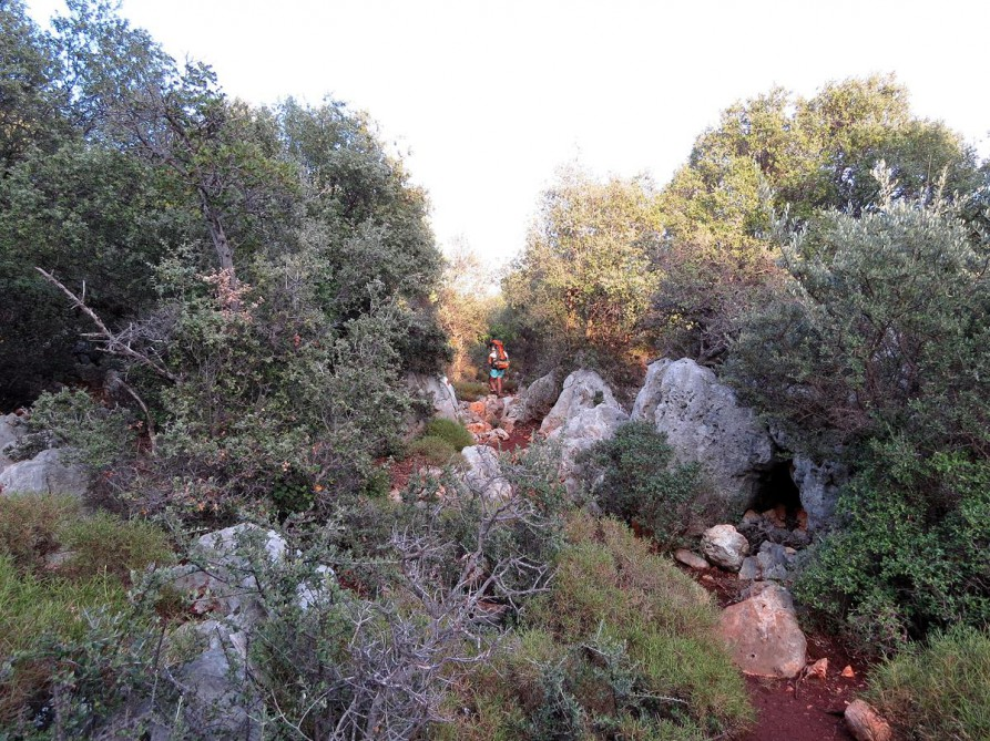 trockenes, struppiges Gebüsch, der Lykische Weg, Türkei