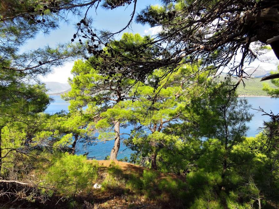 Wald am Mittelmeer, Lykischer Weg