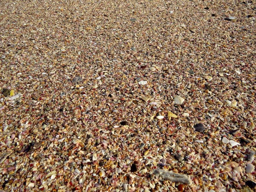 Muschelstrand auf Hormus