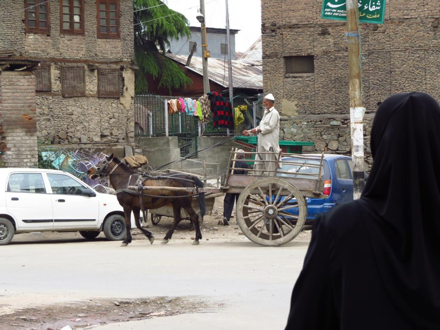 Pferdekutsche, Srinagar