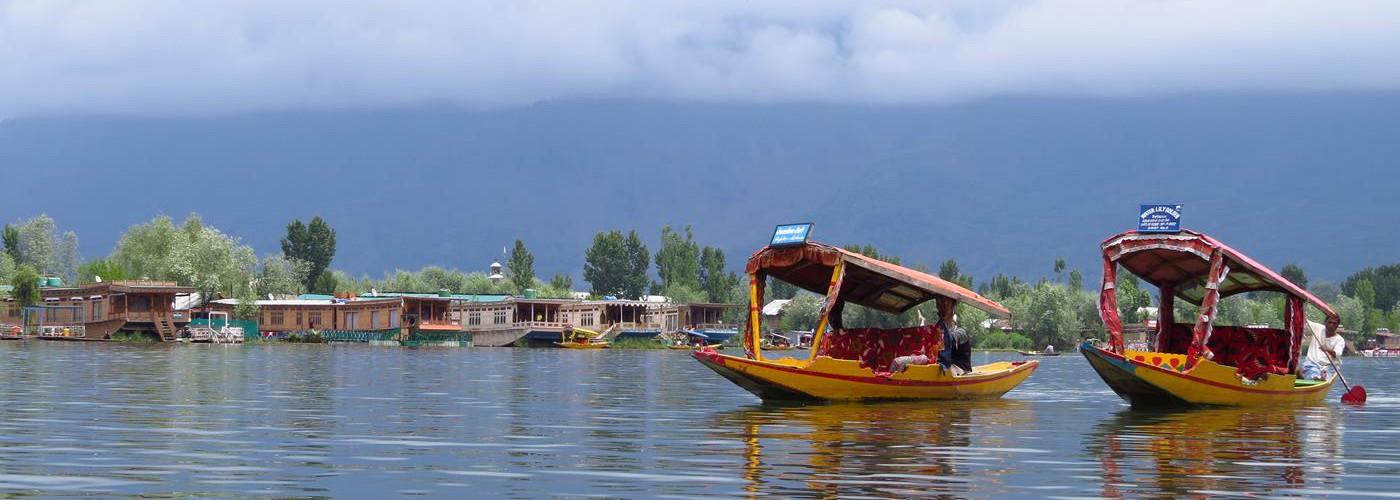 Boote auf dem Dal See, Srinagar, Kaschmir