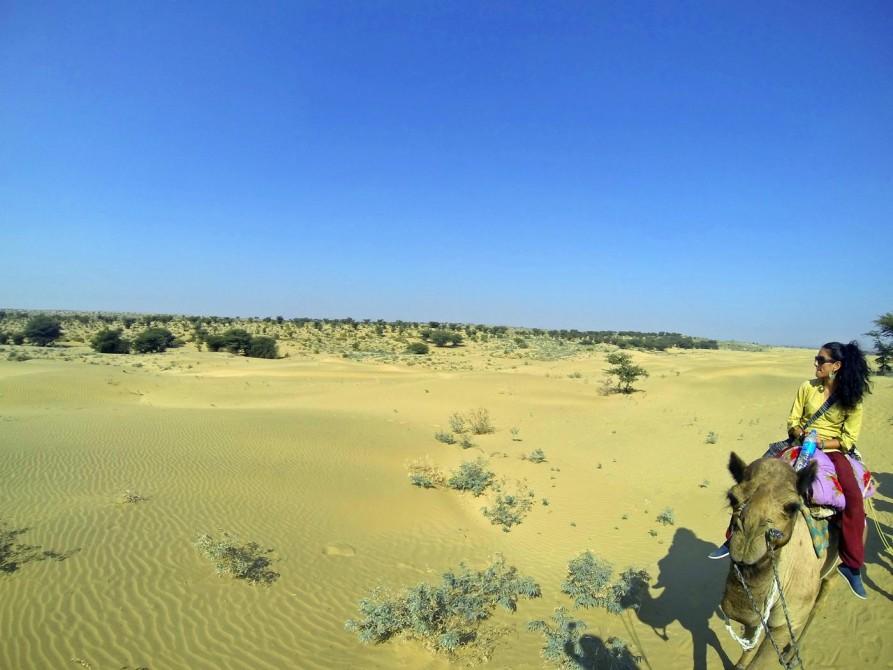 Kamelsafari in der Wüste Thar