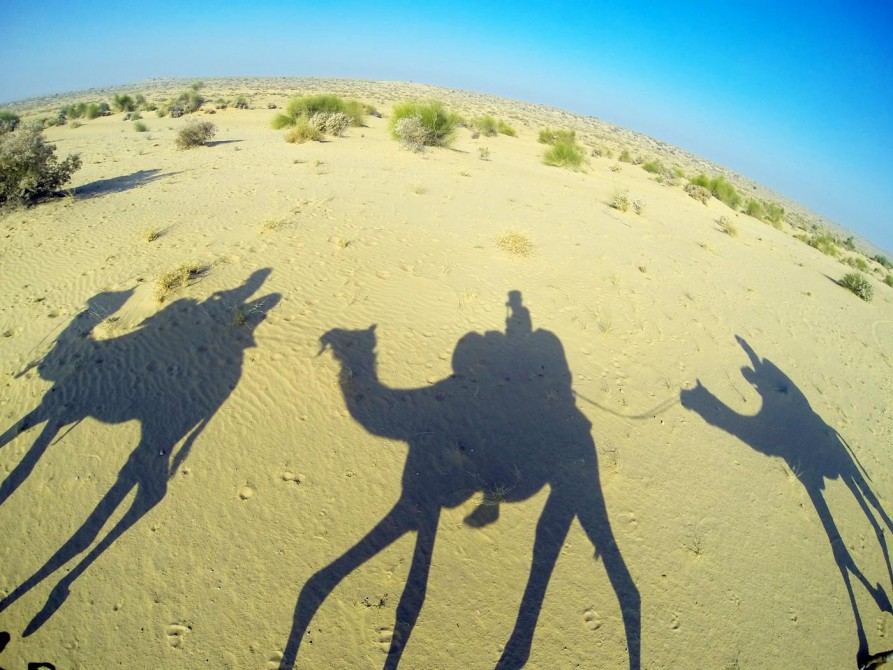der Schatten der Kamele, Jaisalmer