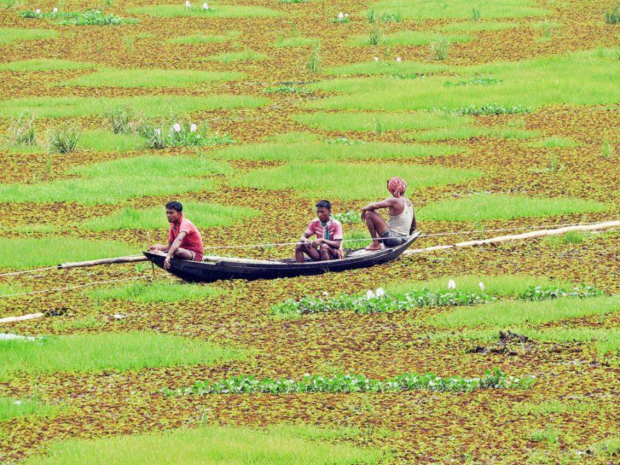 Bootsmänner in Bangladesch