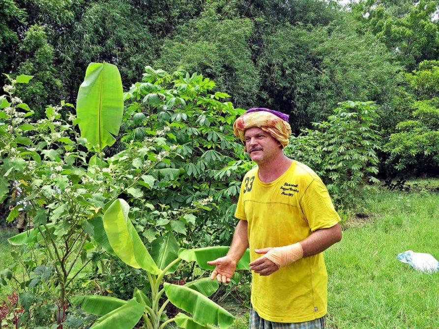 Gärtner erklärt Permakultur, Auroville, Solitude Farm