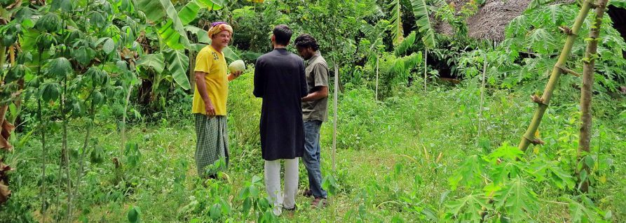 Auroville: Permakultur auf der Solitude Farm