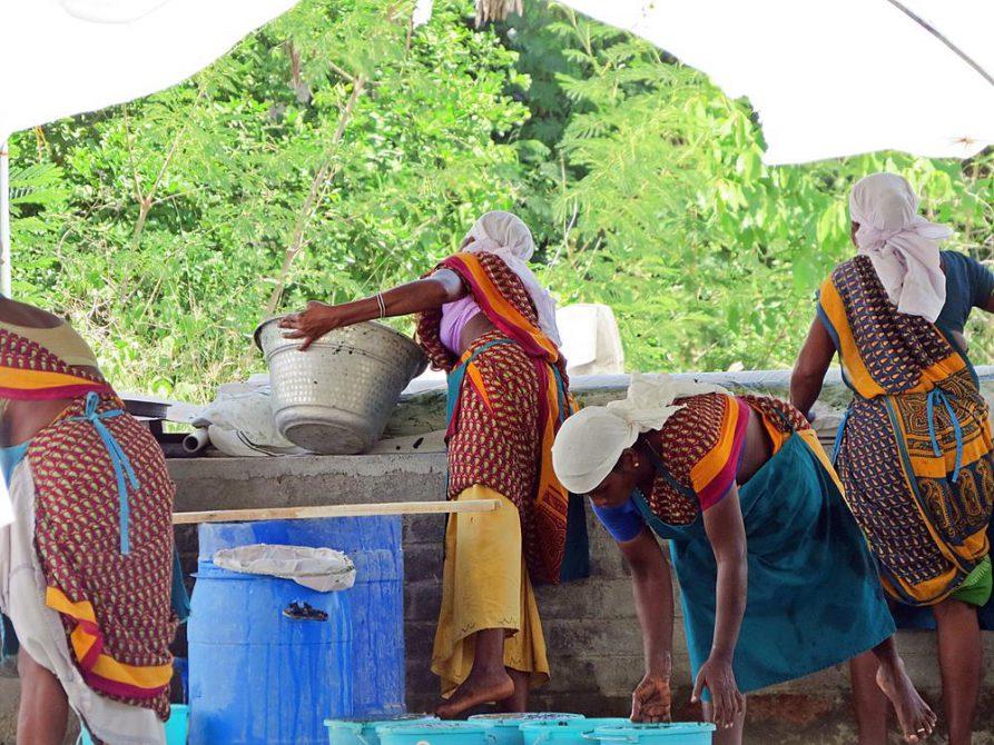 tamilische Arbeiterinnen in Auroville
