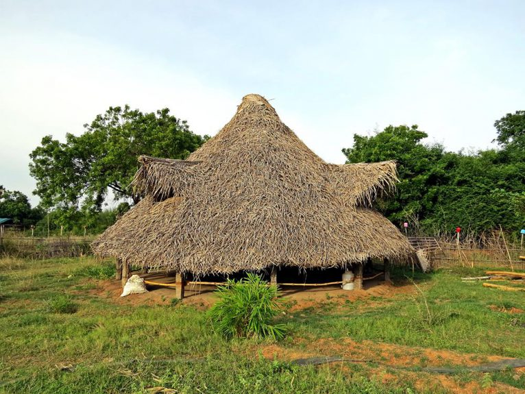 Auroville, Bamboo Land