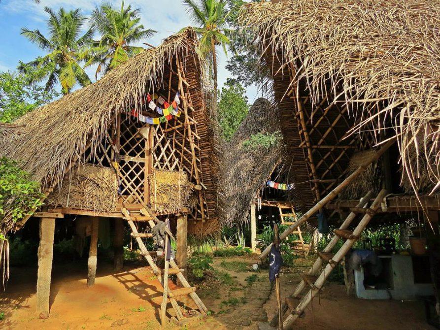 einfache Hütten auf dem Gelände der Discipline Farm