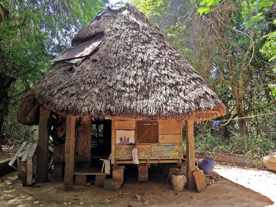kleine Holzhütte mit Palmendach in der Siedlung Fertile, Auroville