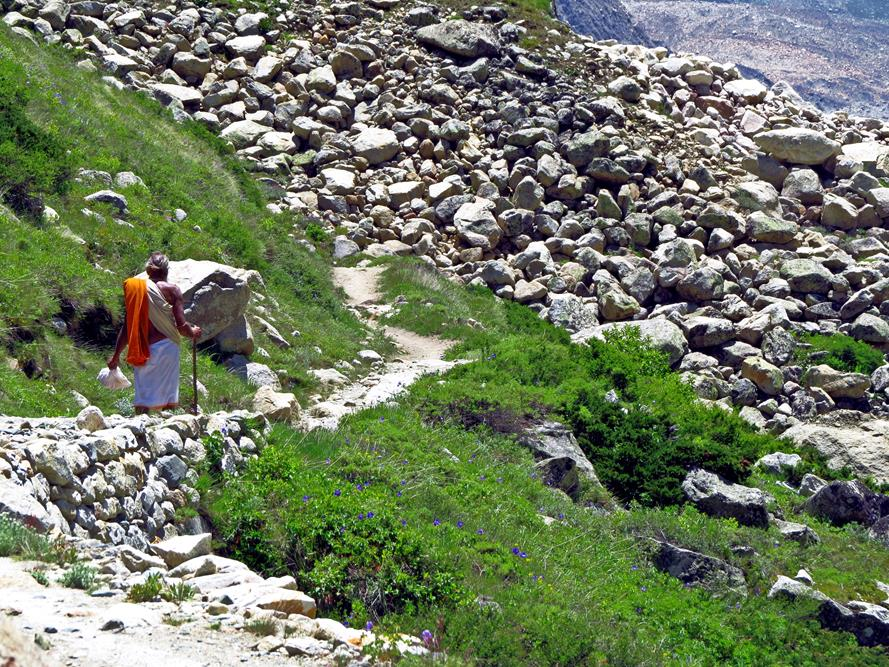 Gangotri Nationalpark, Indien