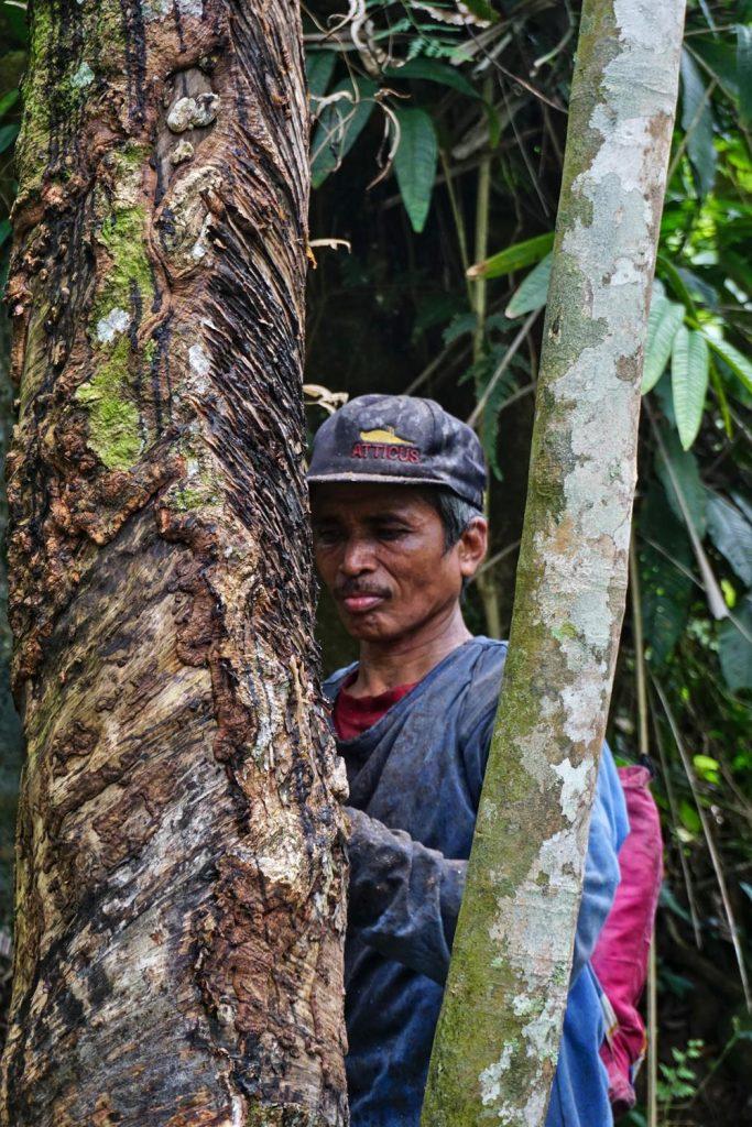 Kautschukbauer auf Sumatra, Indonesien