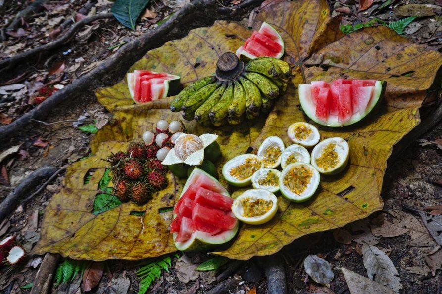 Früchte auf großem Blatt im Dschungel