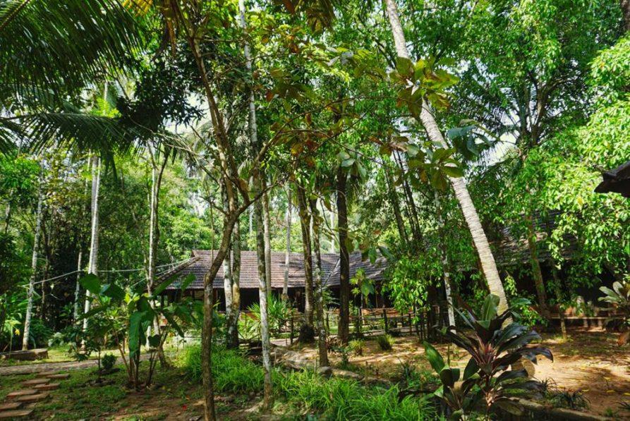 Behandlungsräume im Garten, Ayurveda Mana Resort