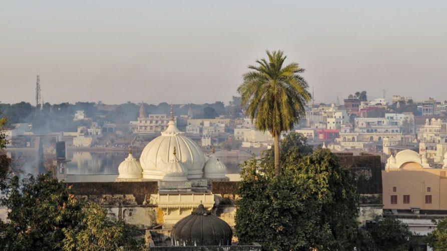 die Dächer von Pushkar, Rajasthan