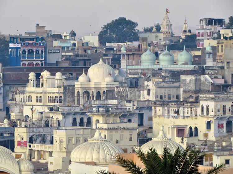 über den Dächern von Pushkar