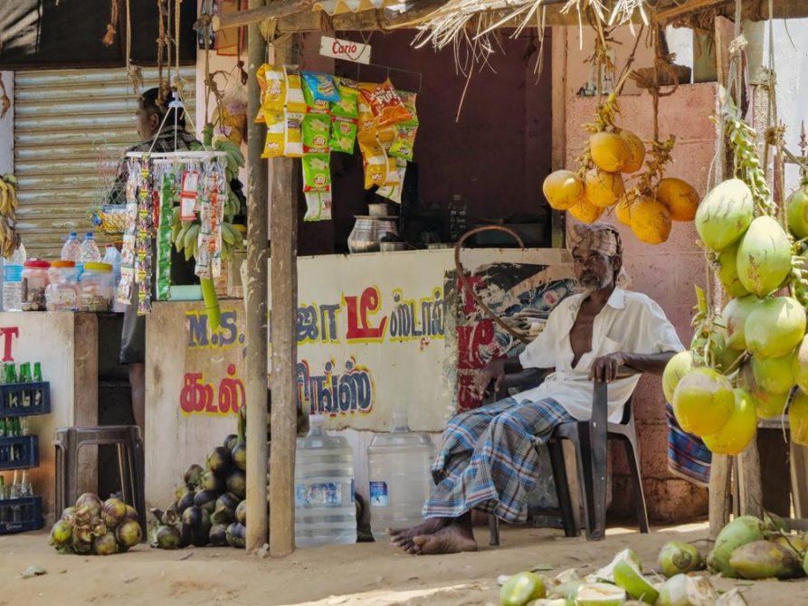 Kokosnussverkäufer in Tamil Nadu