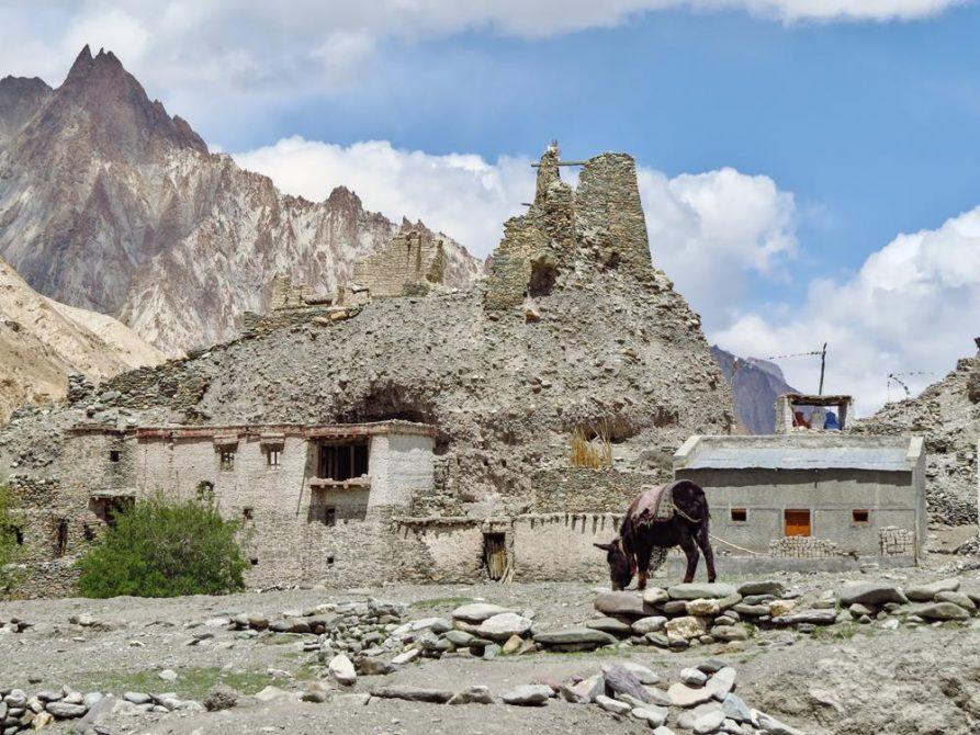 Siedlung im Markha Tal, Ladakh