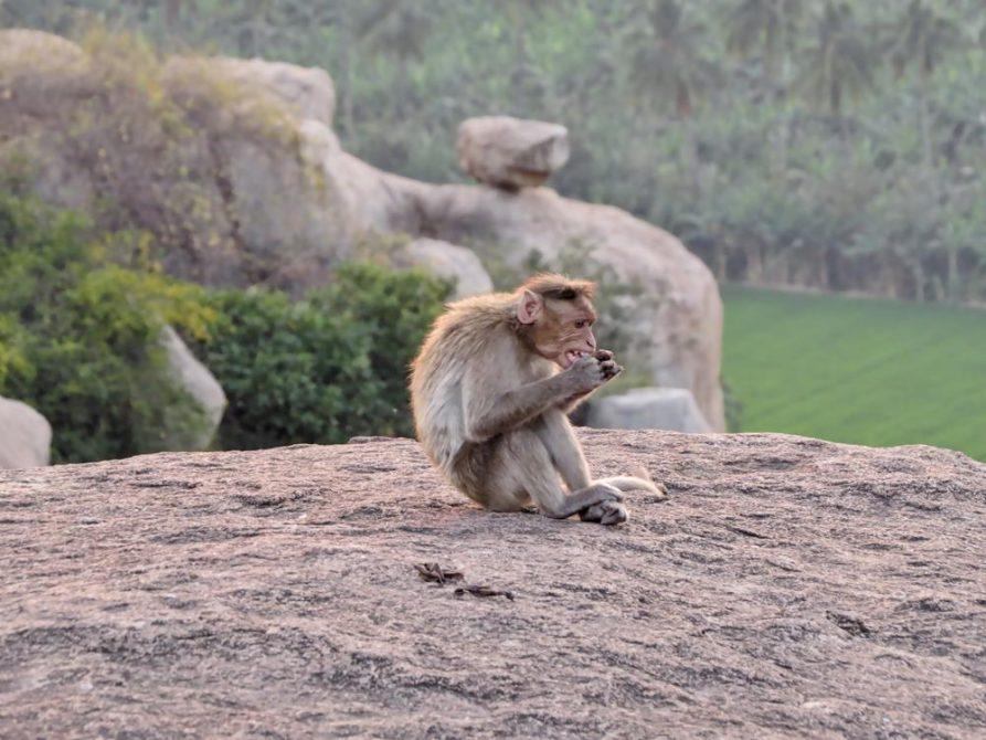 Anjanadri, Hampi, Indien