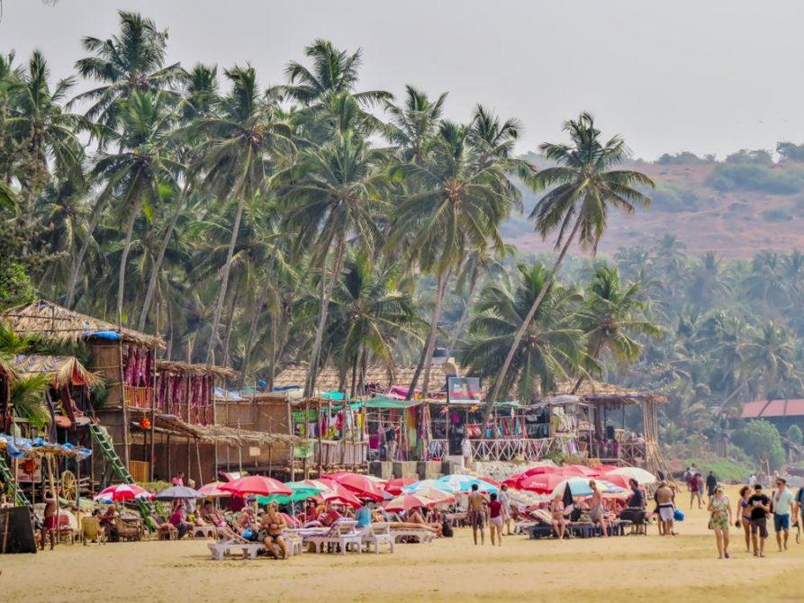 Palmen und Hütten am Strand von Anjuna, Goa