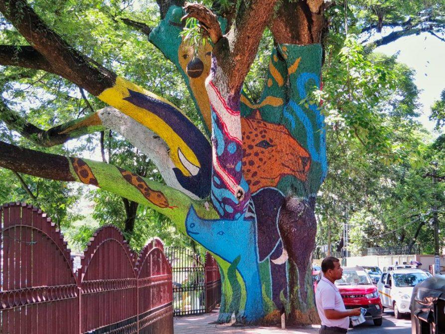 bemalter Baum, Guwahati, Assam, Indien