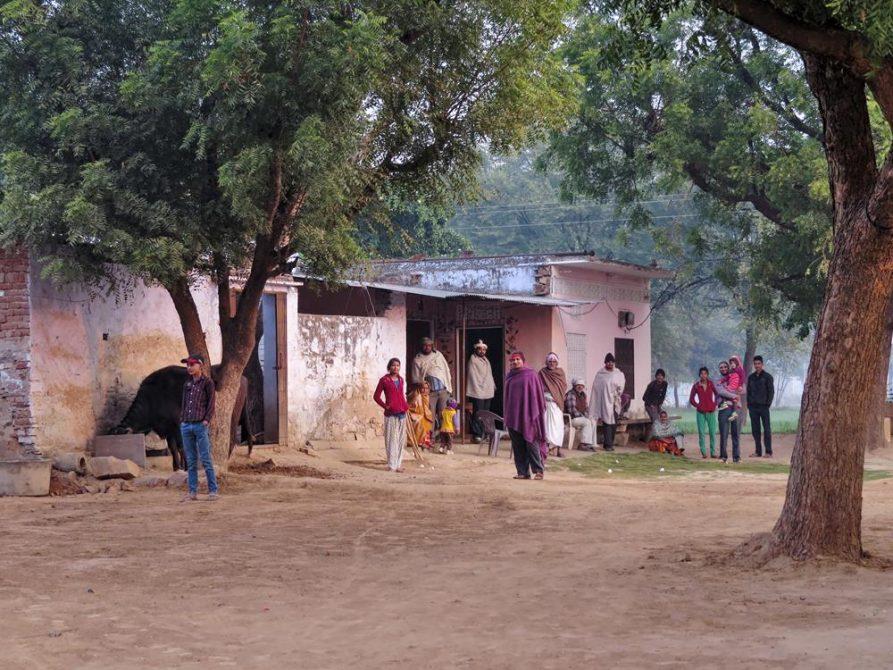 Weiler in Rajasthan, Indien