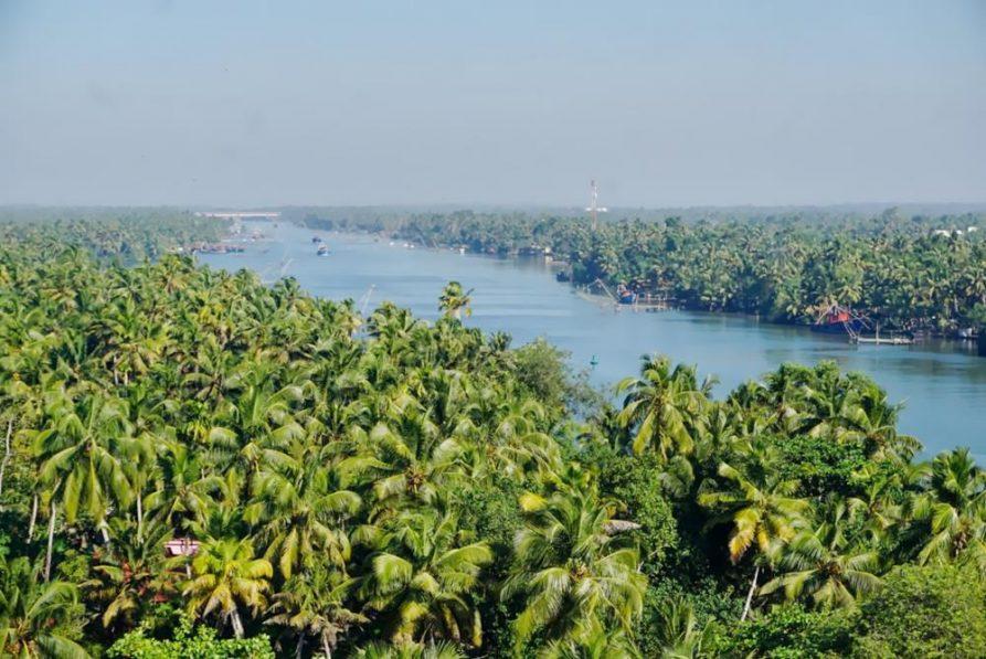 Palmenwald und Fluss, kerala, titel