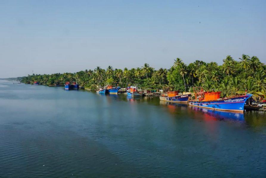 Fluss, Fischerboote, Palmenwald, kerala, Indien