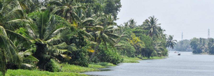 Kerala und die Malabarküste