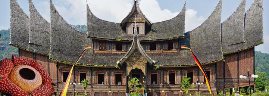 Riesenrafflesien im Land der Minangkabau