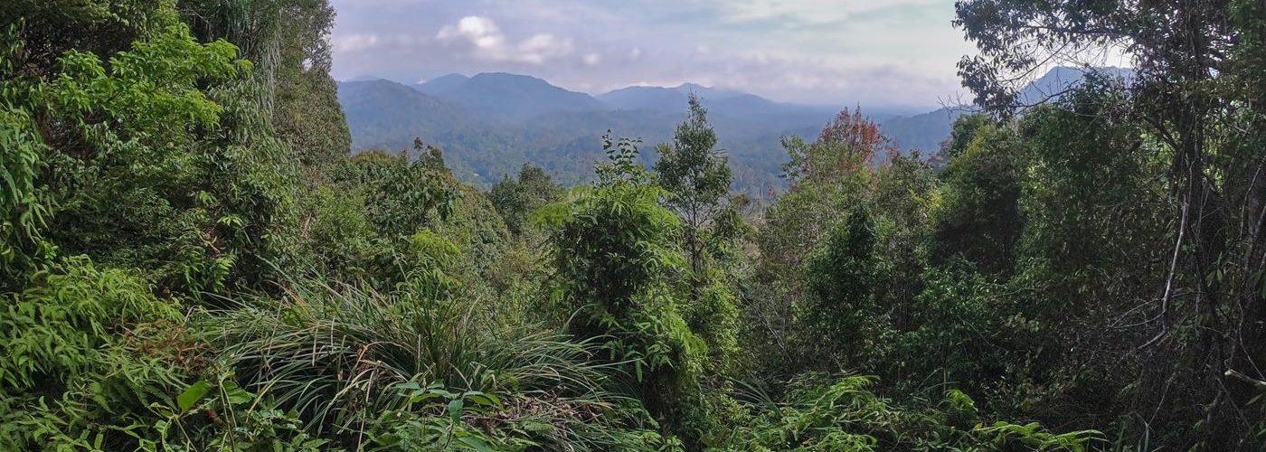 Taman Negara, Malaysia, Titel