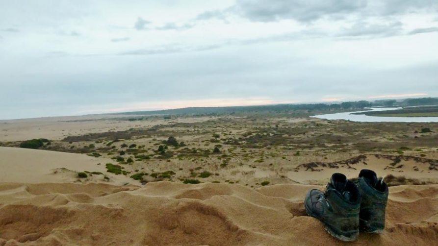 Düne an der Atlantikküste, Uruguay