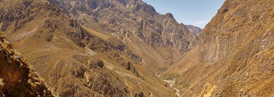 Colca Canyon und die Kondore