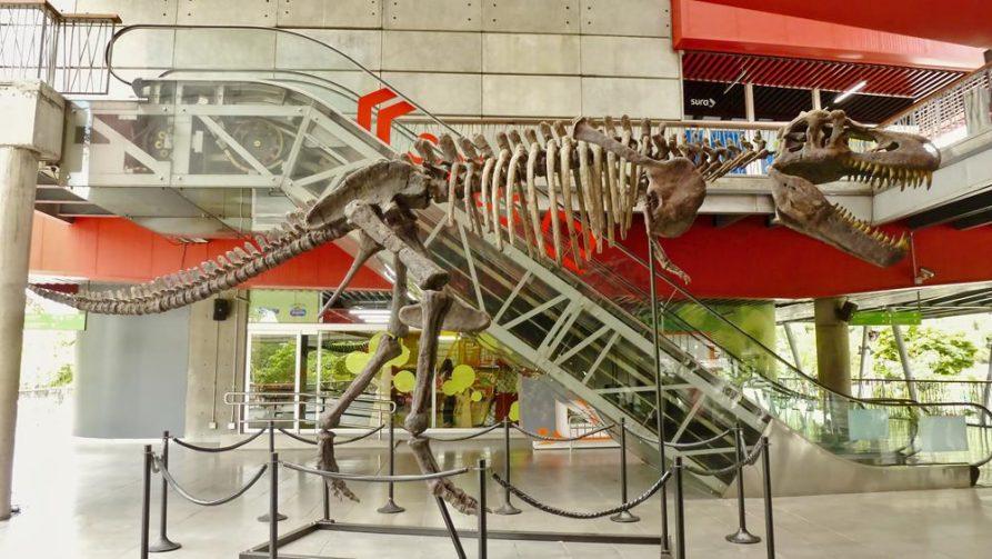 T-Rex in der Metro, Medellín