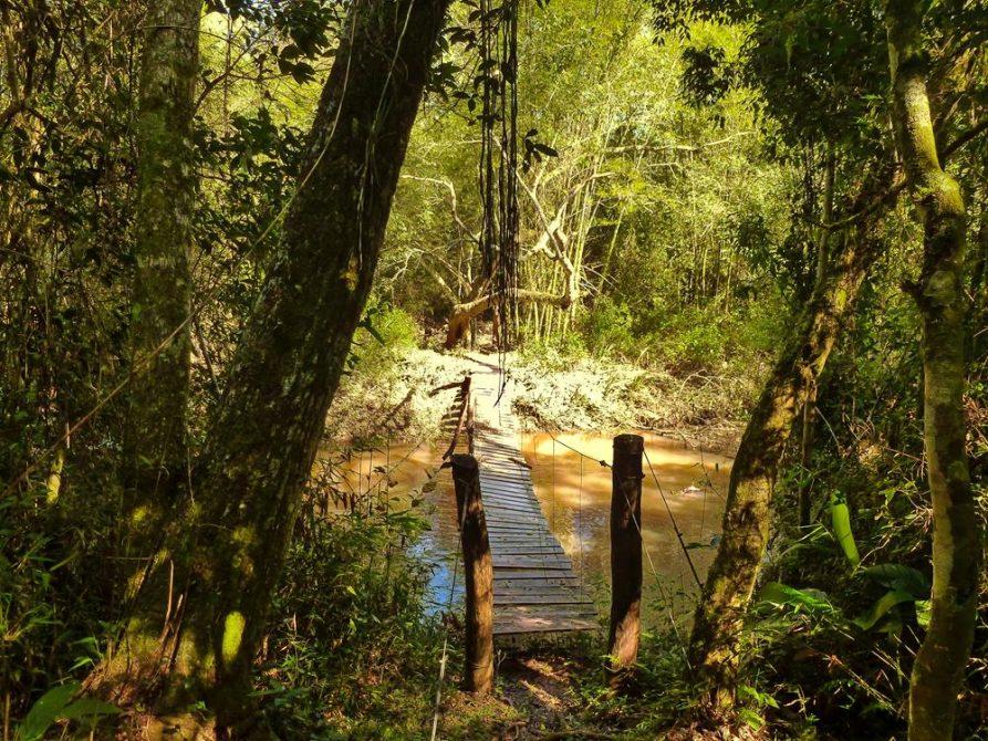Hängebrücke über Fluss