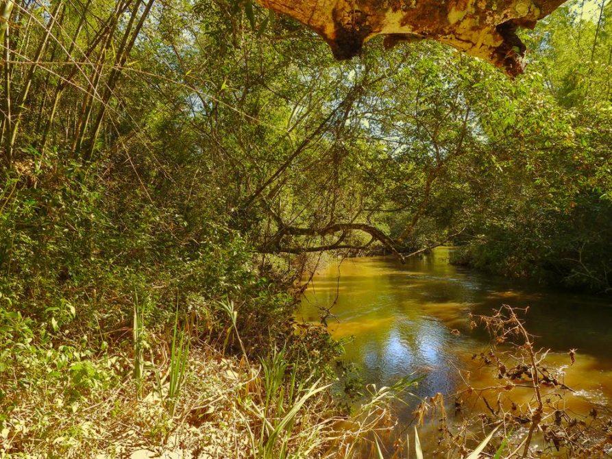 Naturreservat Mbaracayu, Paraguay