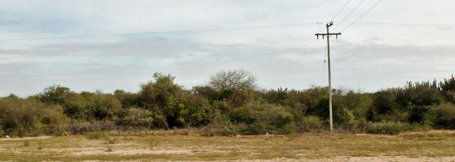 Fernheim im paraguayischen Chaco
