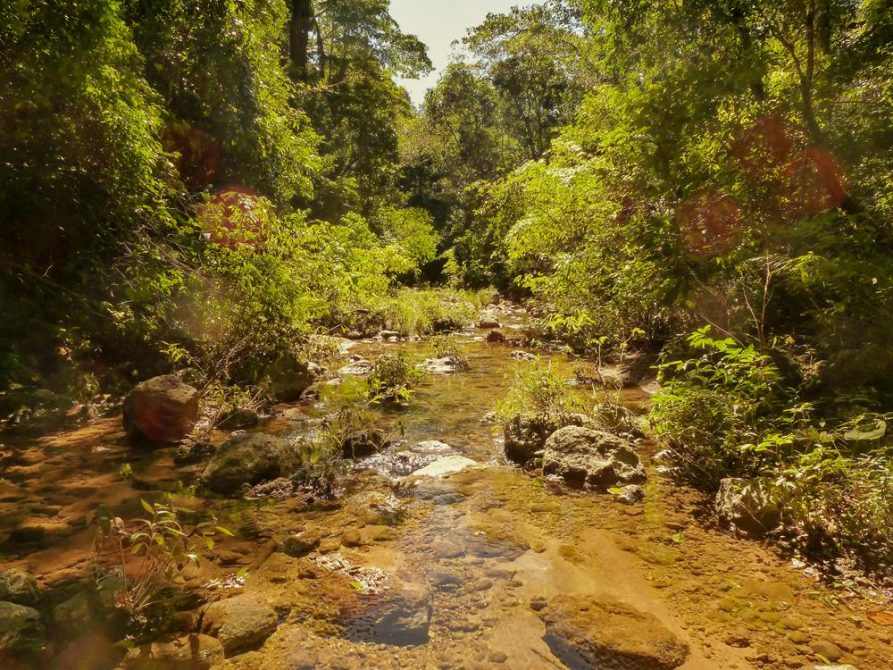 Flusslauf im Nationalpark Amboró, Bolivien